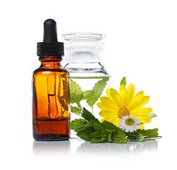 Pflanzliche Medizin
